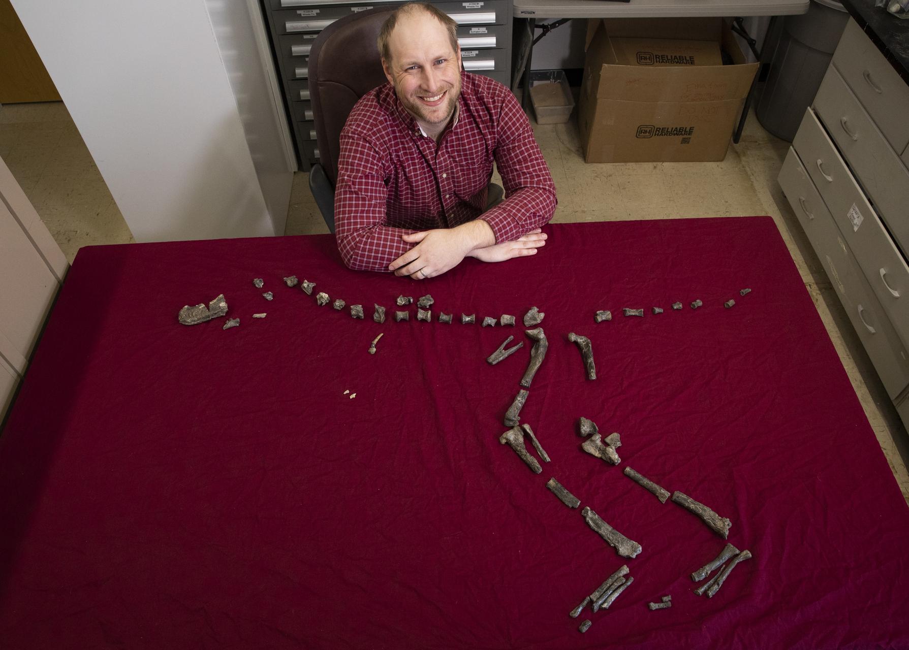 Окаменелость, найденную школьником, идентифицировали как тираннозавроида.Вокруг Света. Украина