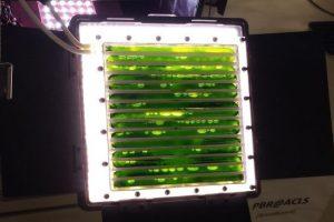 Биореактор в водорослями будет на МКС производить еду и кислород