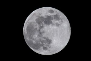 11 компаний, которые помогут НАСА доставить людей на Луну