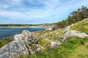 На пляж в Англии море вынесло останки 335-летнего меча