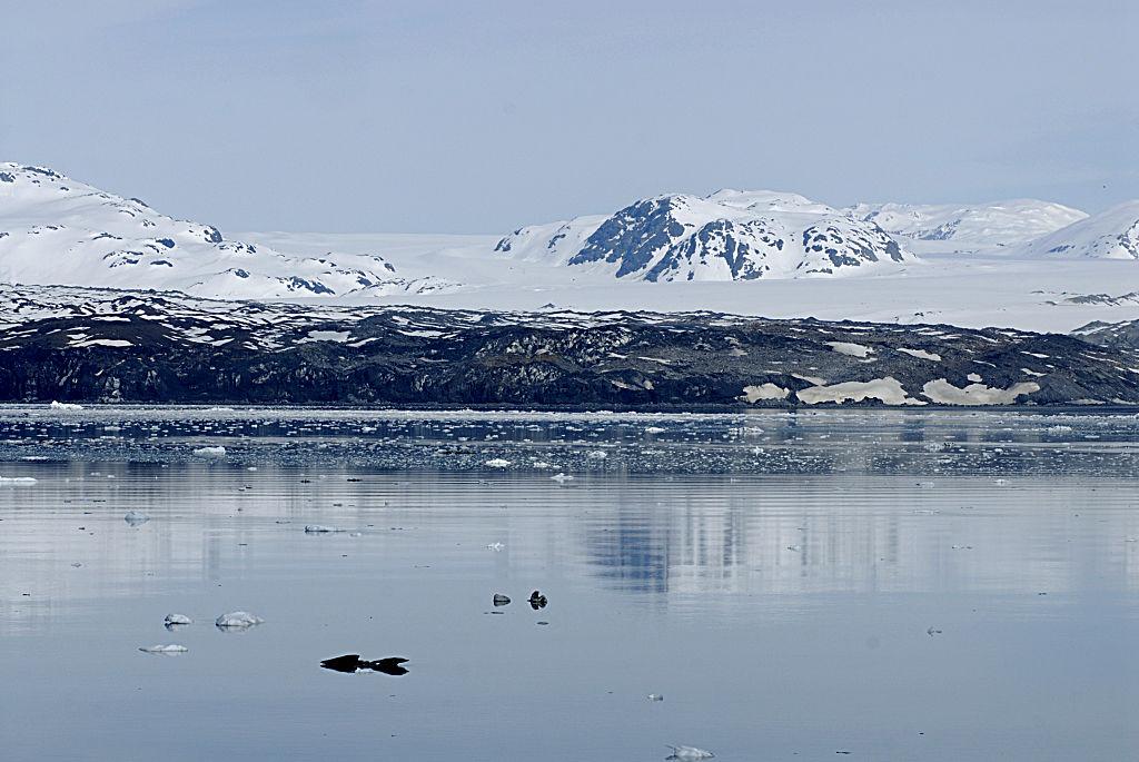 Ледник Эксельсиор на Аляске превратился в озеро