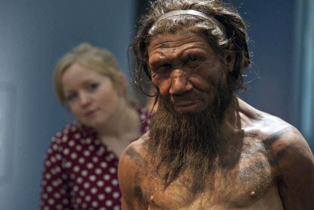 Неандертальцы вымерли из-за женского бесплодия