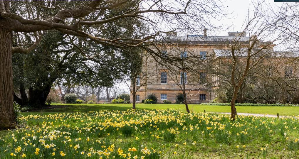 дворец Basilton Park