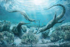 Морской хищник размером с машину обитал в океанах триасового периода