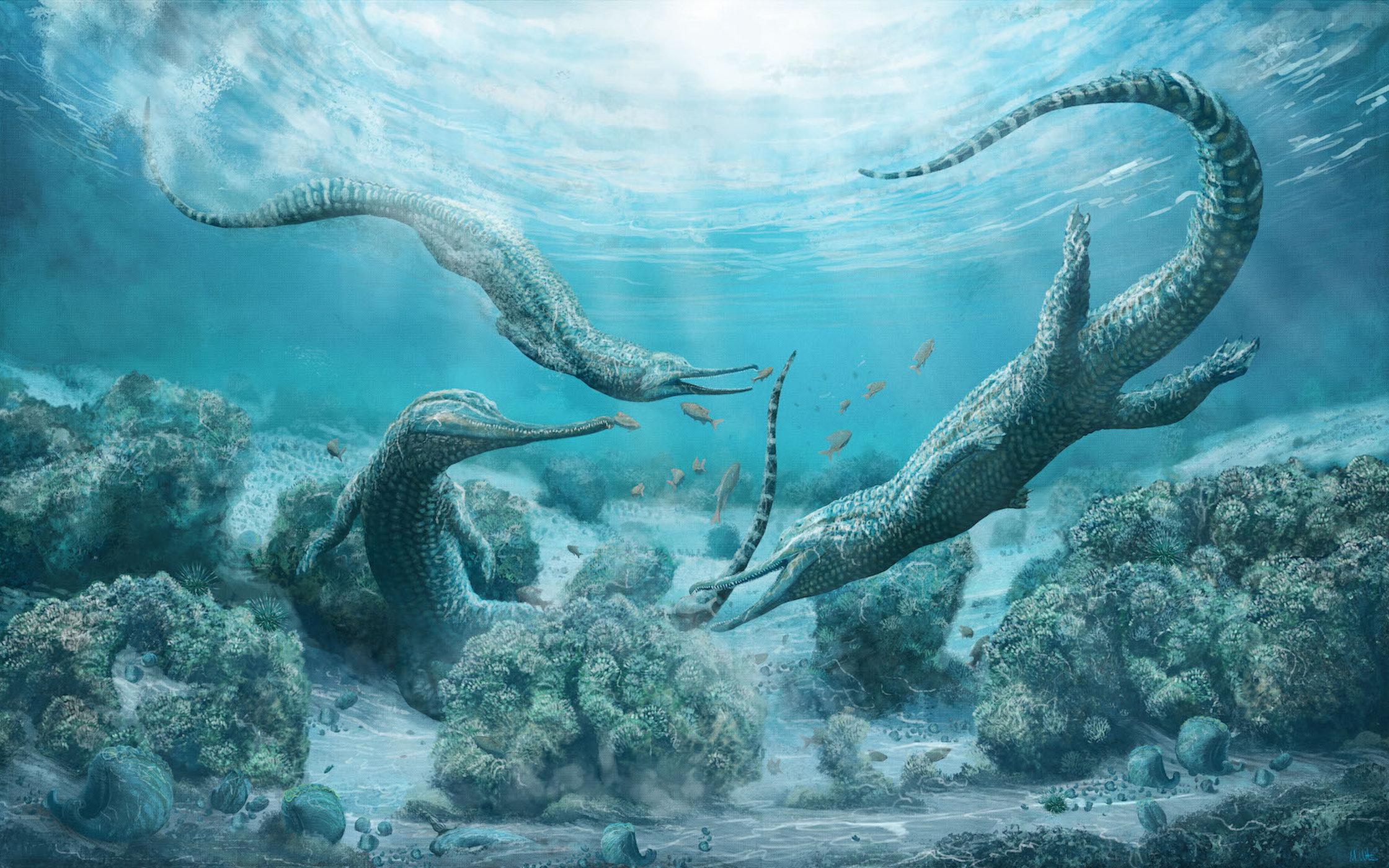 Морской хищник размером с машину обитал в океанах триасового периода.Вокруг Света. Украина