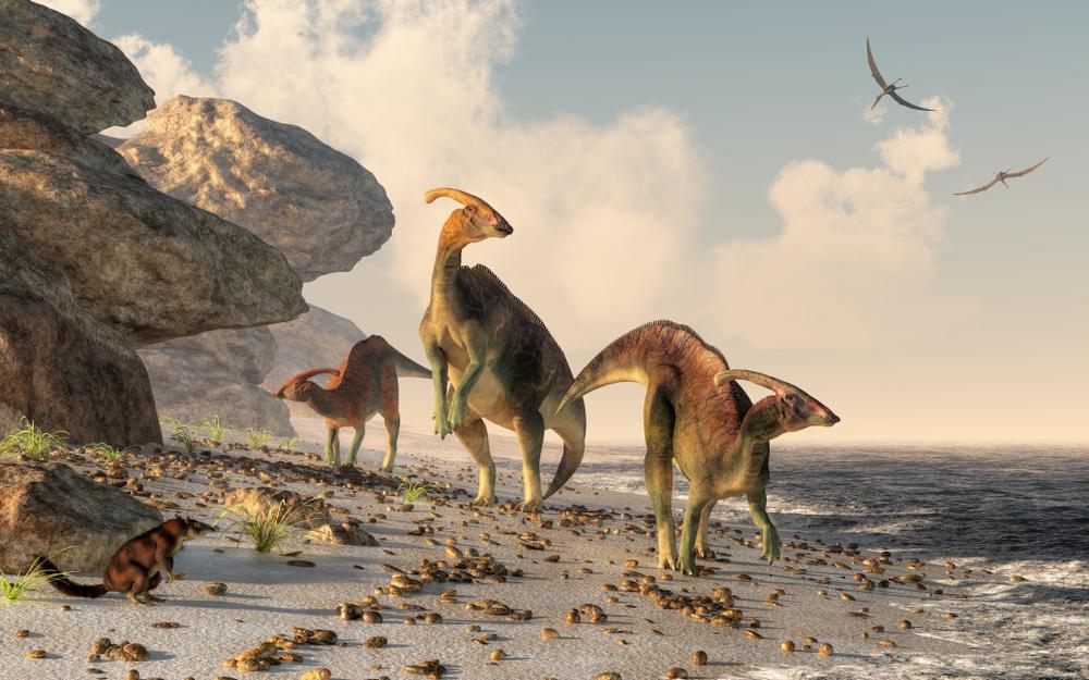 Клопы – ровесники динозавров: как это знание поможет людям?