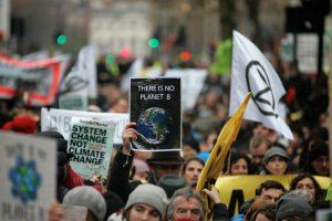 Шестая волна вымирания: отчет ООН о кризисе биоразнообразия