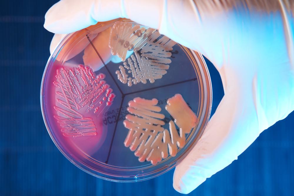 Ученые создали полезную бактерию с искусственной ДНК