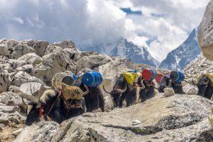 Еверест почали очищати від бруду та людських тіл