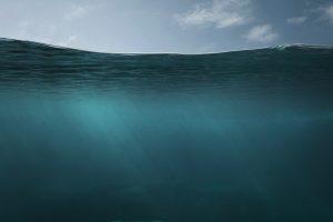 Найдены морские организмы, дышащие мышьяком