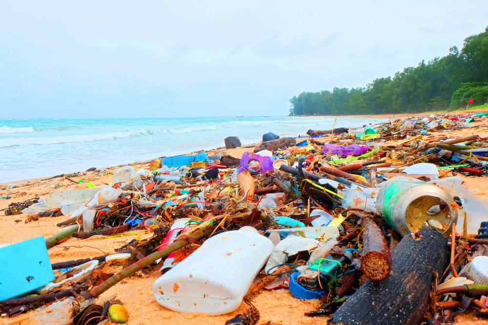 Пластик убивает до миллиона человек в год - ученые.Вокруг Света. Украина