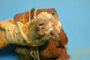 В Боливии среди вещей древнего шамана нашли наркотики