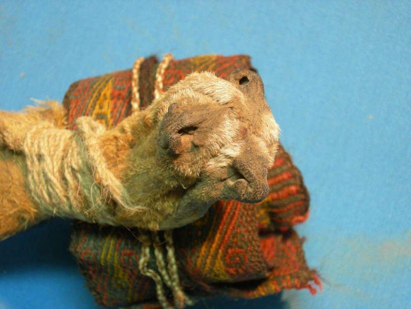 В Боливии среди вещей древнего шамана нашли наркотики.Вокруг Света. Украина