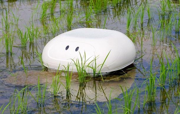 Мутит воду: в Японии создали робоутку