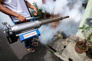 В Таиланде объявлена эпидемия опасной лихорадки Денге