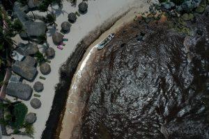 Груды саргассовых водорослей заполонили пляжи Мексики