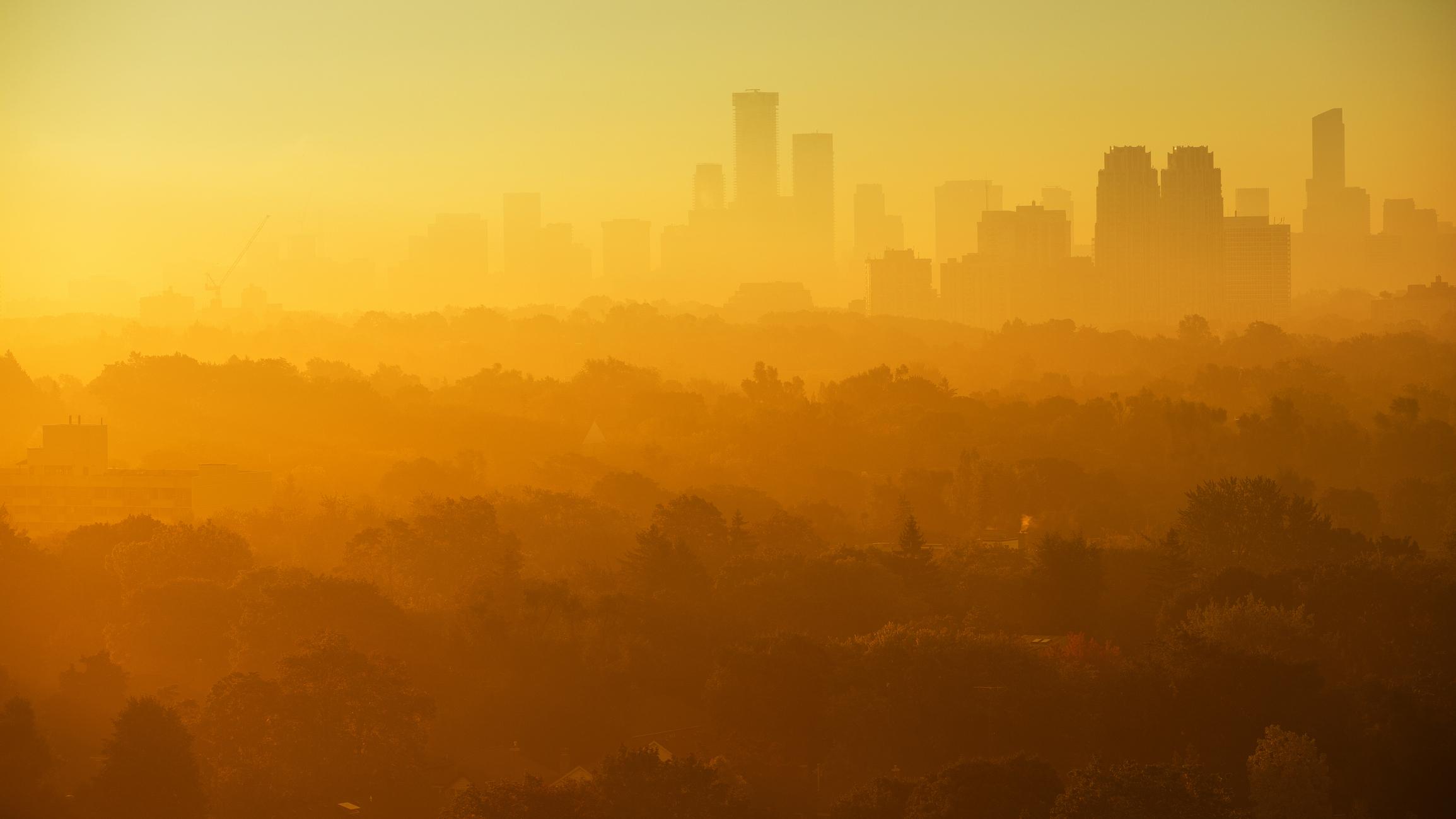 Мир будет сталкиваться с рекордной жарой каждый год, если человечество не примет меры