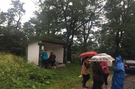 В Ивано-Франковской области молния убила трех человек