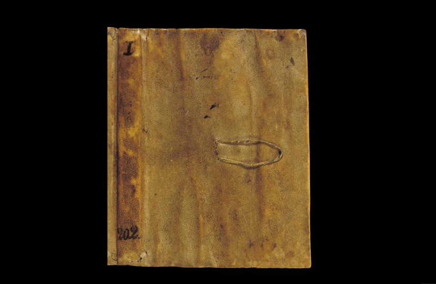 В открытом доступе появились записки Леонардо да Винчи