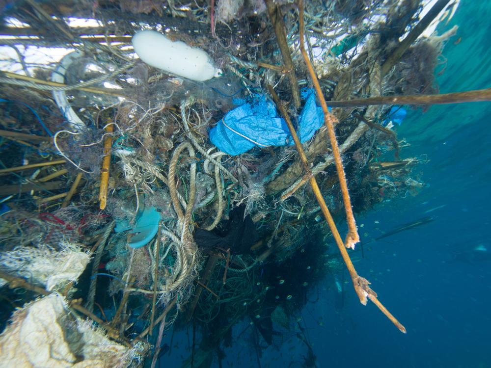 Большое тихоокеанское мусорное пятно снова начнут очищать.Вокруг Света. Украина
