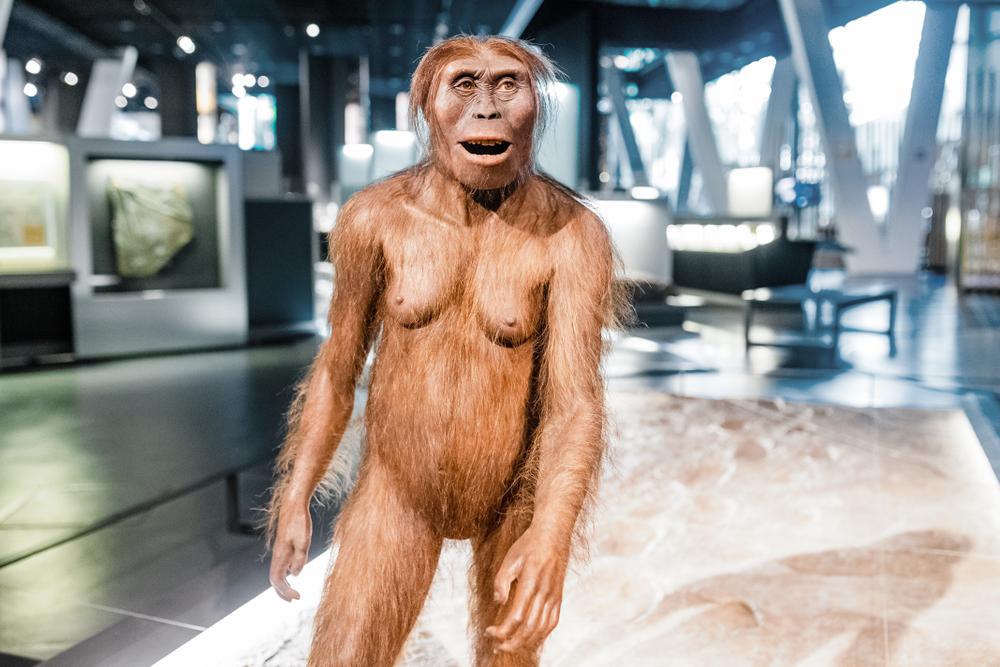 В Африке обнаружили древнейшего гоминида с человеческими признаками