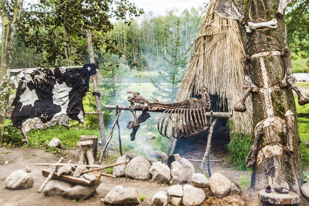 Люди научились готовить около 100 тысяч лет назад