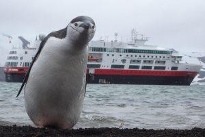 Первый круизный лайнер на аккумуляторном питании идет из Норвегии в Арктику