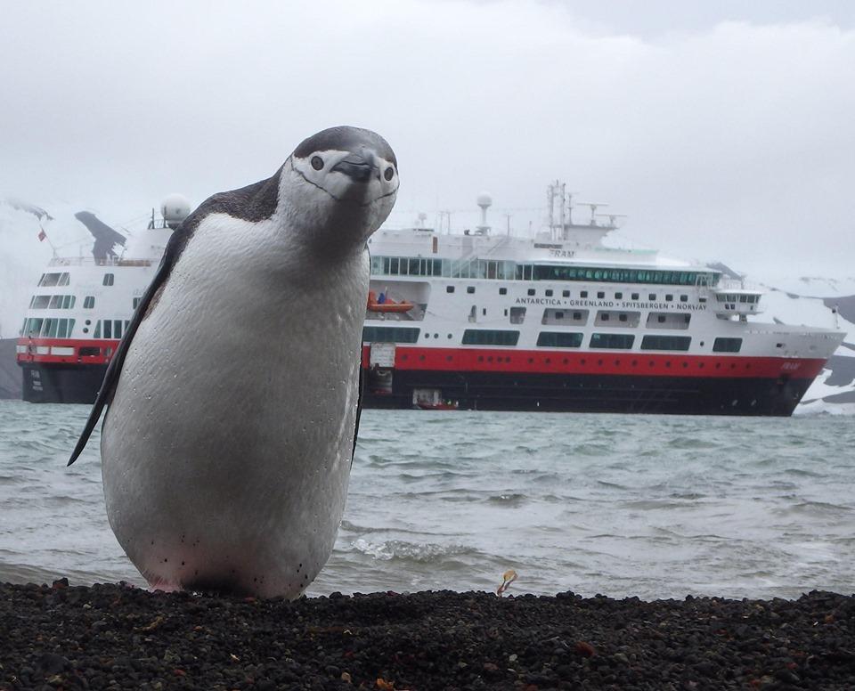 Первый круизный лайнер на аккумуляторном питании идет из Норвегии в Арктику.Вокруг Света. Украина