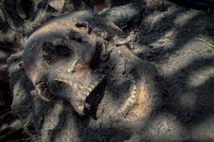 В Житомирской области нашли массовое захоронение детей