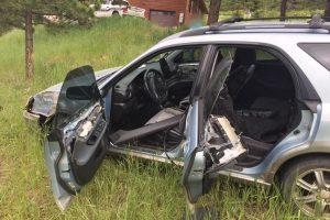 В США медведь угнал автомобиль и попал в аварию