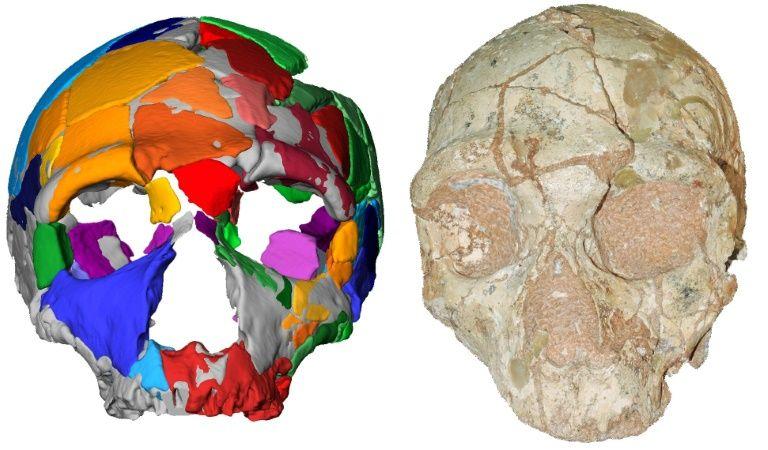 В Греции обнаружены древнейшие за пределами Африки человеческие останки.Вокруг Света. Украина