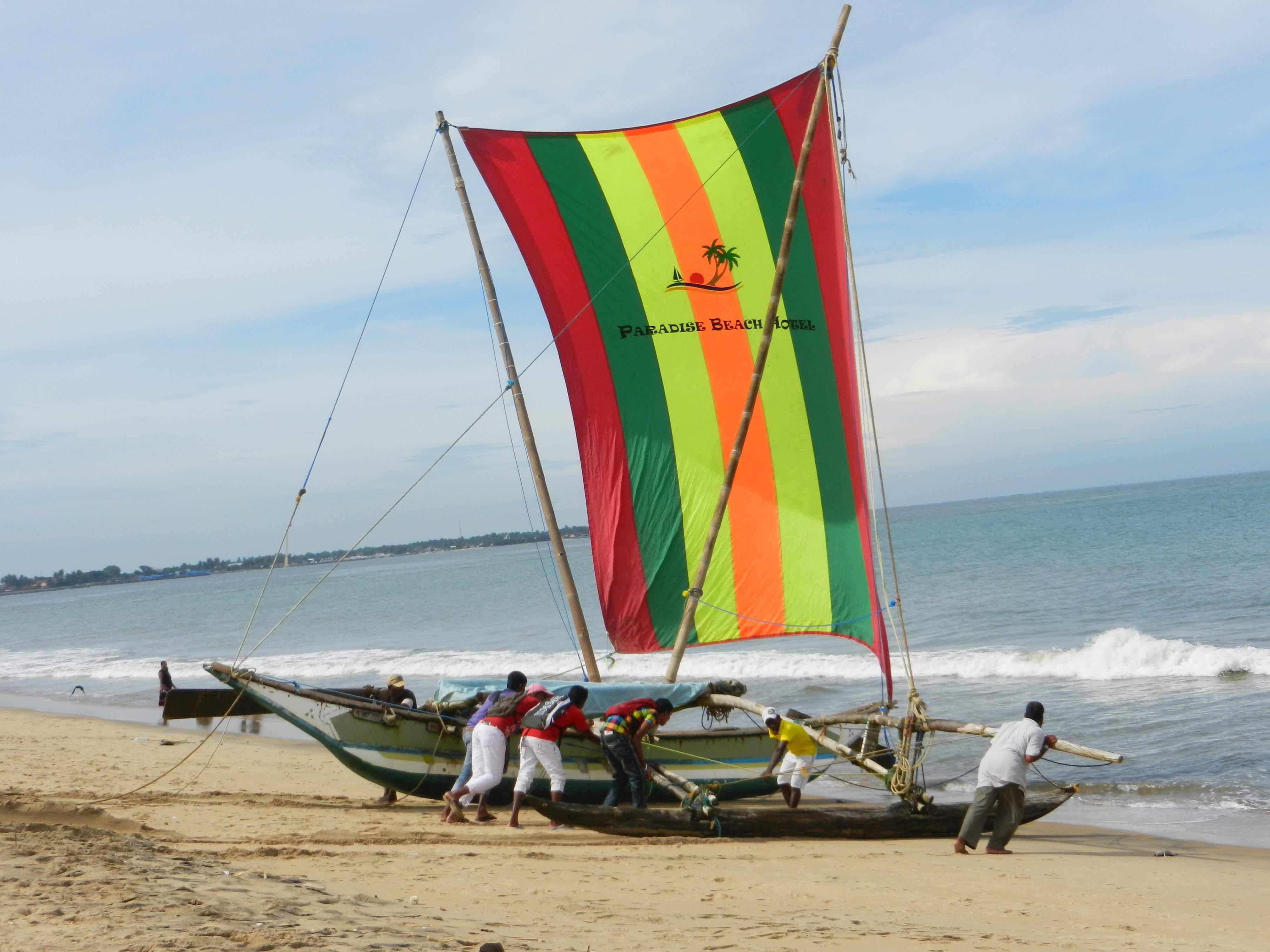 Достопримечательности Шри-Ланки: как организовать поездку самостоятельно