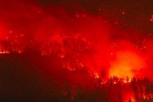 В России горит лес на площади размером с Бельгию: пожар не тушат