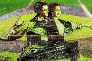 """В Китае на рисовом поле вырастили кадр из фильма """"Титаник"""""""