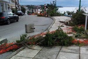 В Греции стихия убила туристов