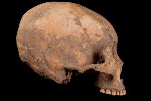 В Китае нашли древнейшее свидетельство искусственной деформации черепа