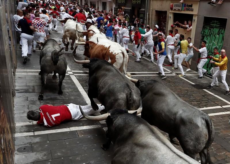 В Испании во время забега быков пострадали 5 человек