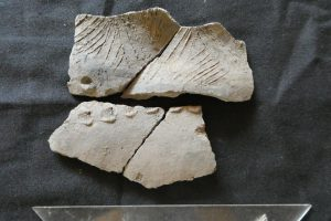 В Эквадоре обнаружили 6500-летнюю керамику неизвестной культуры