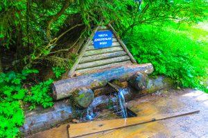 В Закарпатье состоится фестиваль минеральных вод