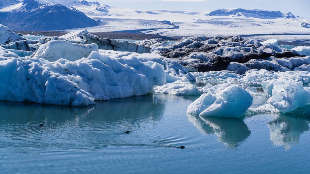 Таяние ледников можно остановить искусственным снегопадом.Вокруг Света. Украина