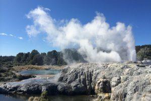 В Новой Зеландии во дворе местной жительницы проснулся гейзер