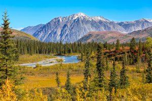 Из-за потепления микробы на Аляске будут выделять больше парниковых газов