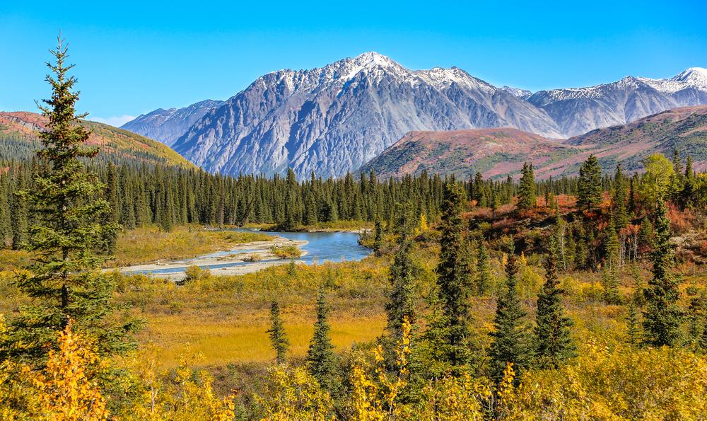 Из-за потепления микробы на Аляске будут выделять больше парниковых газов.Вокруг Света. Украина