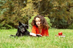 Американских студентов спасают от стресса собаки