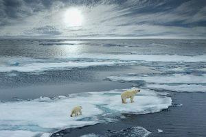 Нынешнее изменение климата не имеет аналогов за последние 2 тысячи лет – исследование