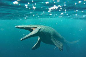 Шахтеры искали драгоценные камни, а нашли древнее морское существо