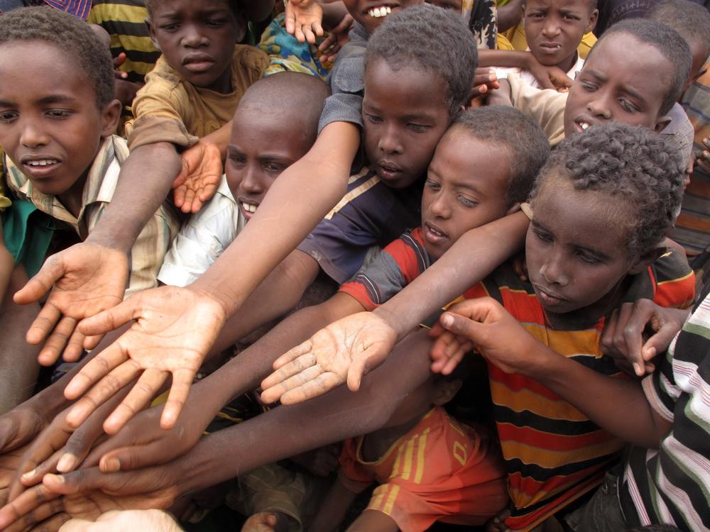 Более 820 миллионов человек в мире голодают: доклад ООН