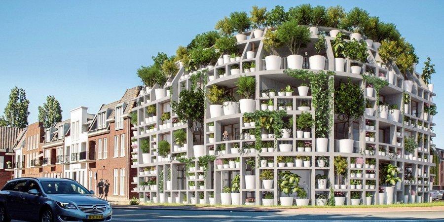 В Нидерландах построят жилой дом со стенами из комнатных растений