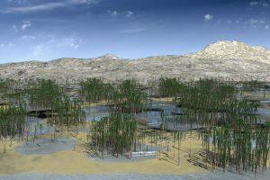 В Китае нашли окаменелости древнейшего леса в Азии