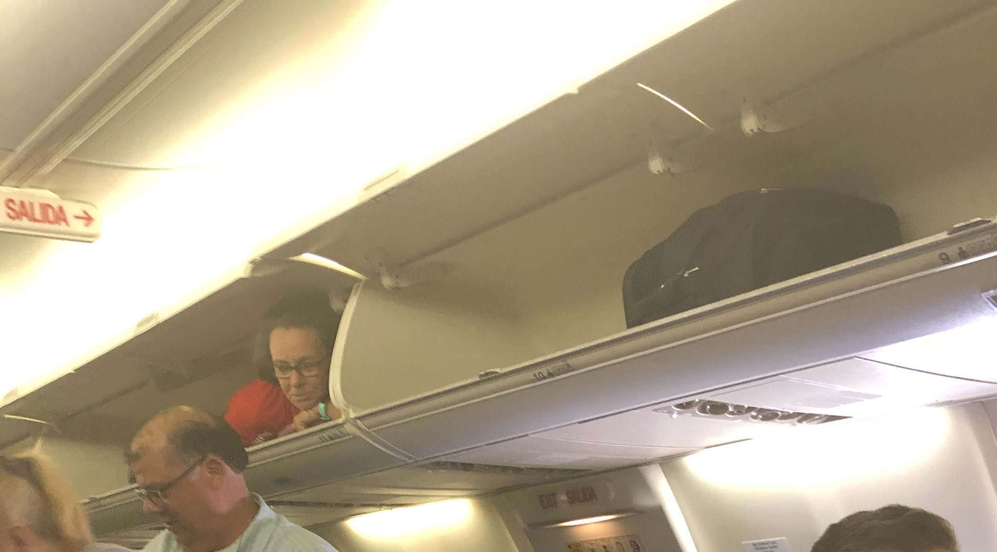 В США стюардесса во время рейса залезла на багажную полку